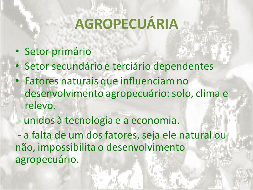 AGROPECUÁRIA Setor primário Setor secundário e terciário dependentes Fatores naturais que influenciam no desenvolvimento agropecuário: solo, clima e r