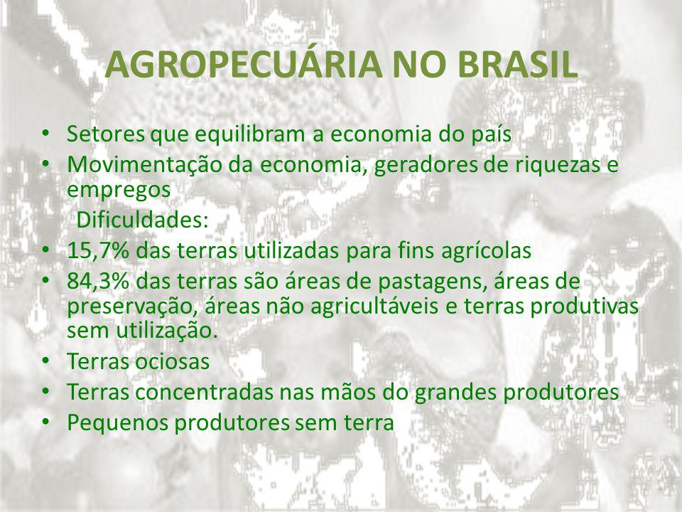 AGROPECUÁRIA NO BRASIL Setores que equilibram a economia do país Movimentação da economia, geradores de riquezas e empregos Dificuldades: 15,7% das te