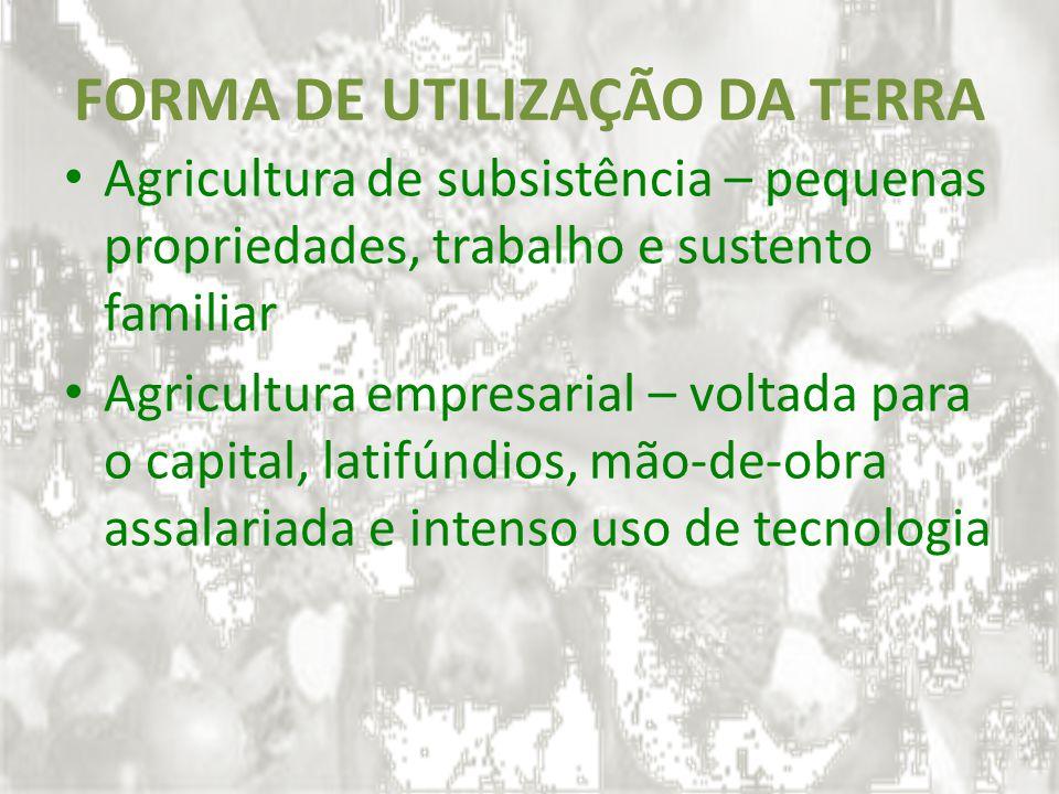 FORMA DE UTILIZAÇÃO DA TERRA Agricultura de subsistência – pequenas propriedades, trabalho e sustento familiar Agricultura empresarial – voltada para