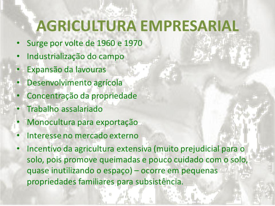 AGRICULTURA EMPRESARIAL Surge por volte de 1960 e 1970 Industrialização do campo Expansão da lavouras Desenvolvimento agrícola Concentração da proprie