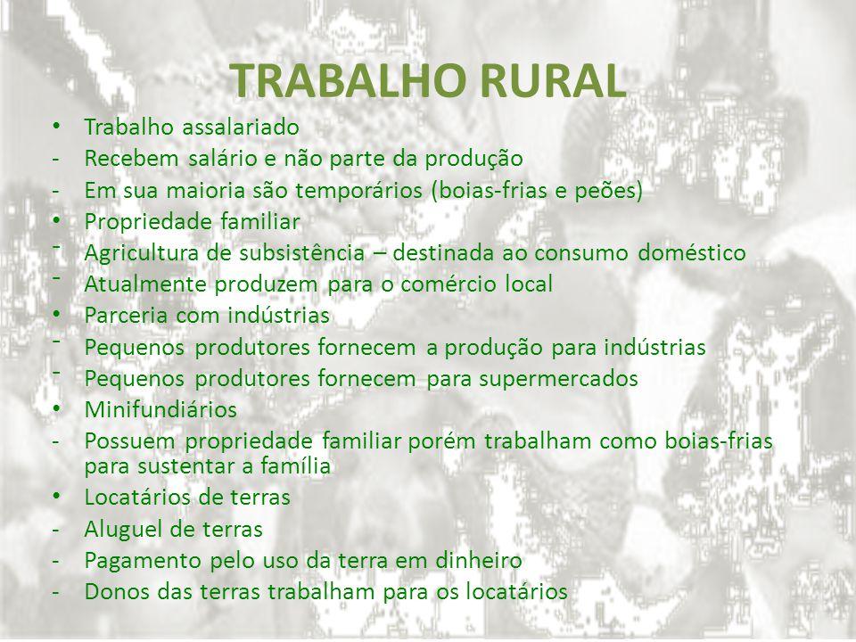 TRABALHO RURAL Trabalho assalariado -Recebem salário e não parte da produção -Em sua maioria são temporários (boias-frias e peões) Propriedade familia