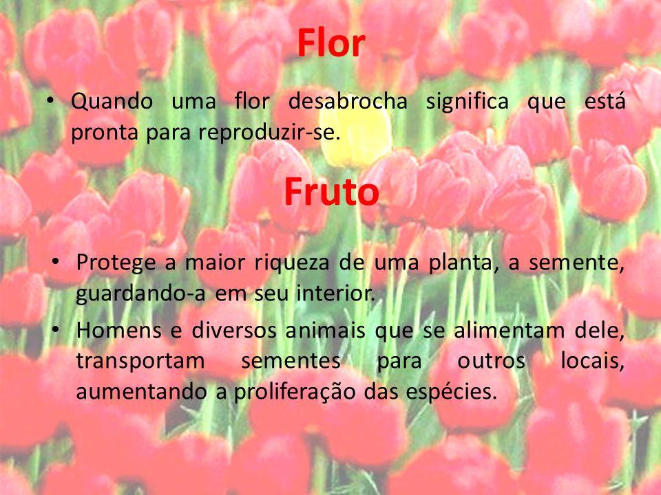 Flor Quando uma flor desabrocha significa que está pronta para reproduzir-se. Protege a maior riqueza de uma planta, a semente, guardando-a em seu int