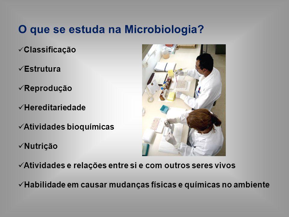 O que se estuda na Microbiologia? Classificação Estrutura Reprodução Hereditariedade Atividades bioquímicas Nutrição Atividades e relações entre si e
