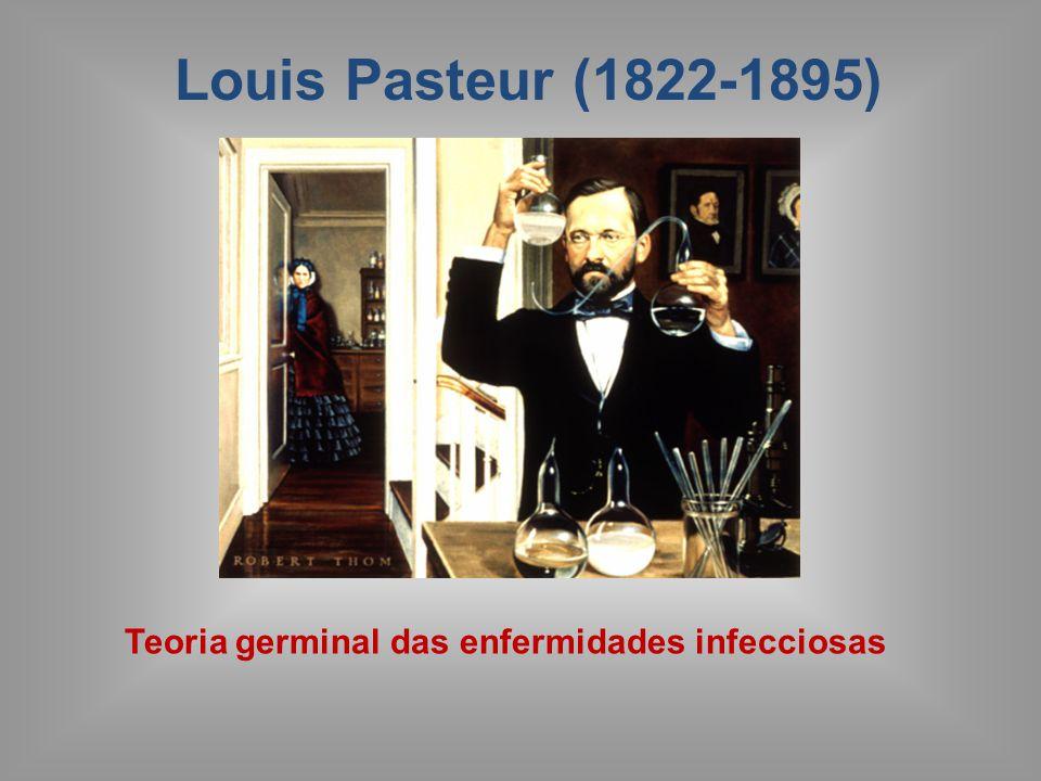Teoria microbiana das doenças Robert Koch (1843-1910): Descobriu a etiologia do Antraz.