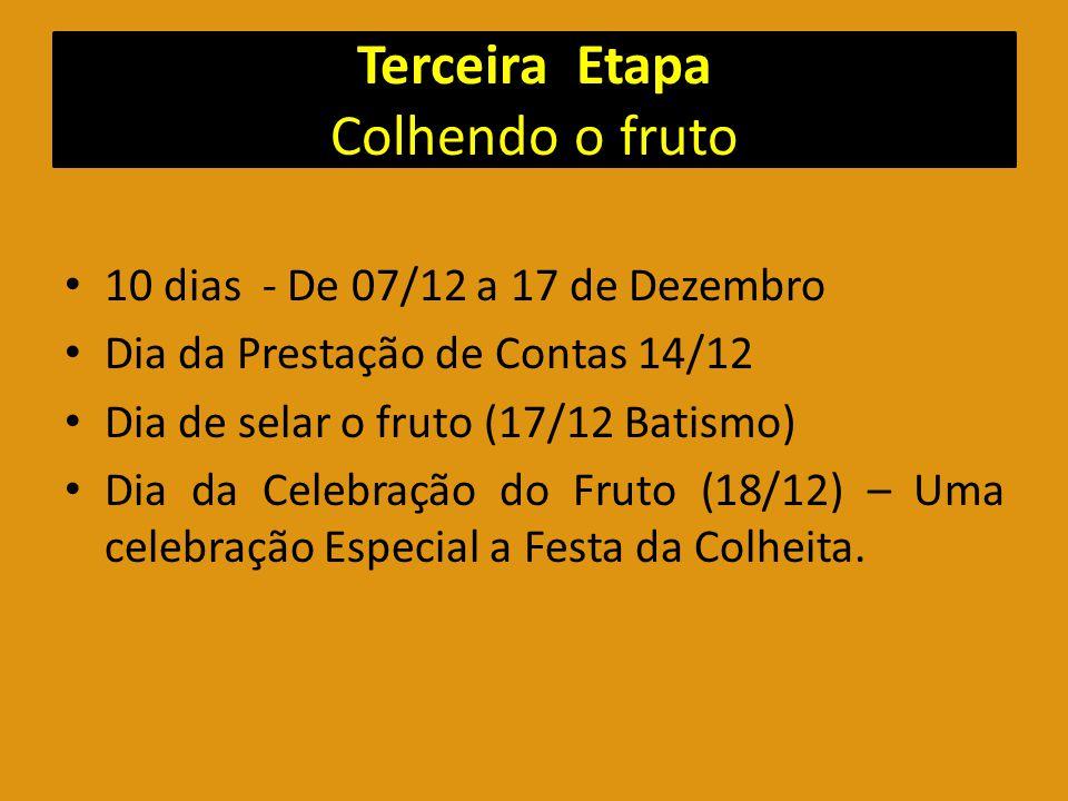 Terceira Etapa Colhendo o fruto 10 dias - De 07/12 a 17 de Dezembro Dia da Prestação de Contas 14/12 Dia de selar o fruto (17/12 Batismo) Dia da Celeb