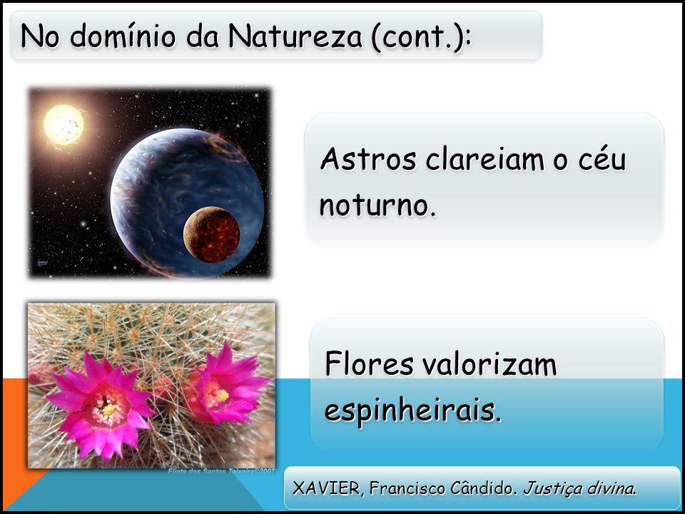 No domínio da Natureza (cont.): XAVIER, Francisco Cândido.