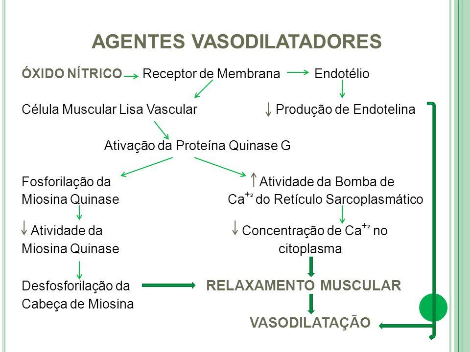 ÓXIDO NÍTRICO Receptor de Membrana Endotélio Célula Muscular Lisa Vascular Produção de Endotelina Ativação da Proteína Quinase G Fosforilação da Ativi