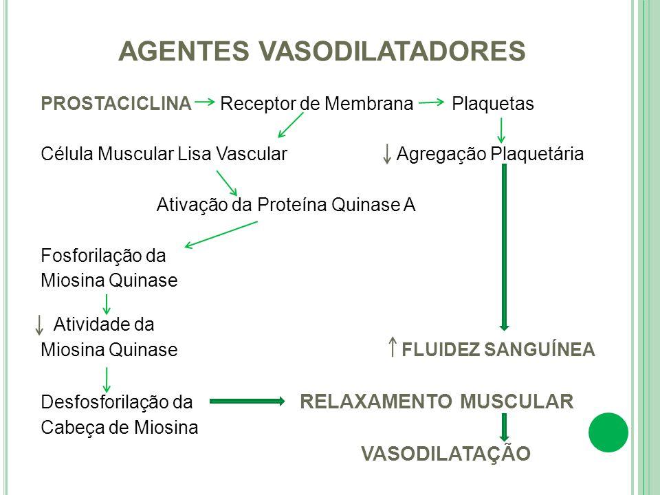 PROSTACICLINA Receptor de Membrana Plaquetas Célula Muscular Lisa Vascular Agregação Plaquetária Ativação da Proteína Quinase A Fosforilação da Miosin