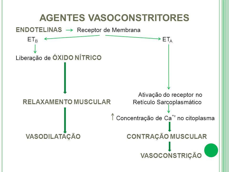 ENDOTELINAS Receptor de Membrana ET B ET A Liberação de ÓXIDO NÍTRICO Ativação do receptor no RELAXAMENTO MUSCULAR Retículo Sarcoplasmático Concentraç