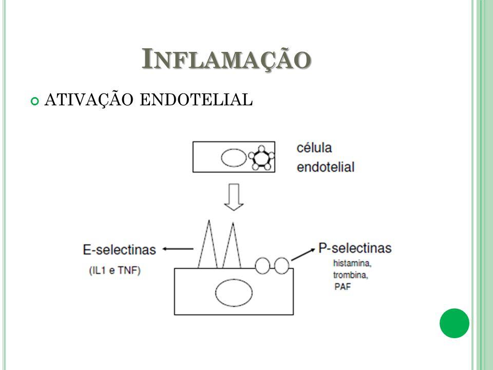 I NFLAMAÇÃO ATIVAÇÃO ENDOTELIAL