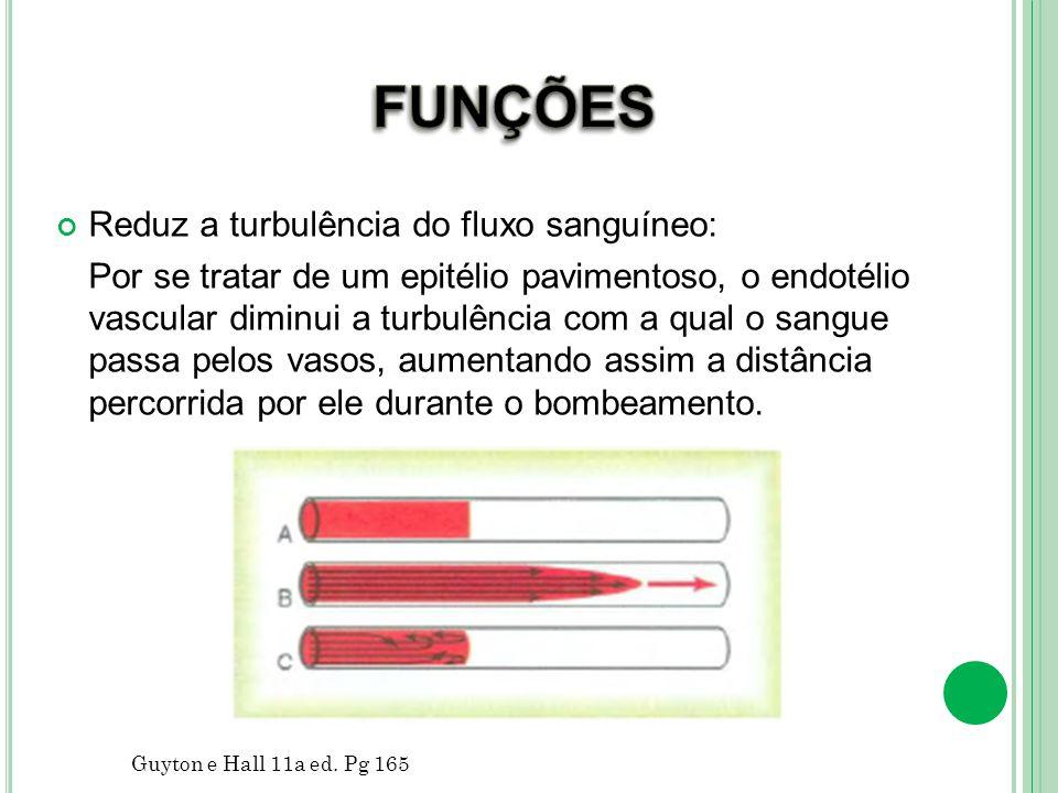 DISFUNÇÕES ENDOTELIAIS Aterosclerose : Inflamação crônica que leva ao aparecimento de placas de ateroma no interior dos vasos sanguíneos.