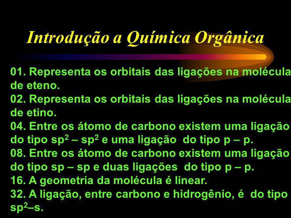 Introdução a Química Orgânica (UFSC-96) Assinale as proposições corretas.