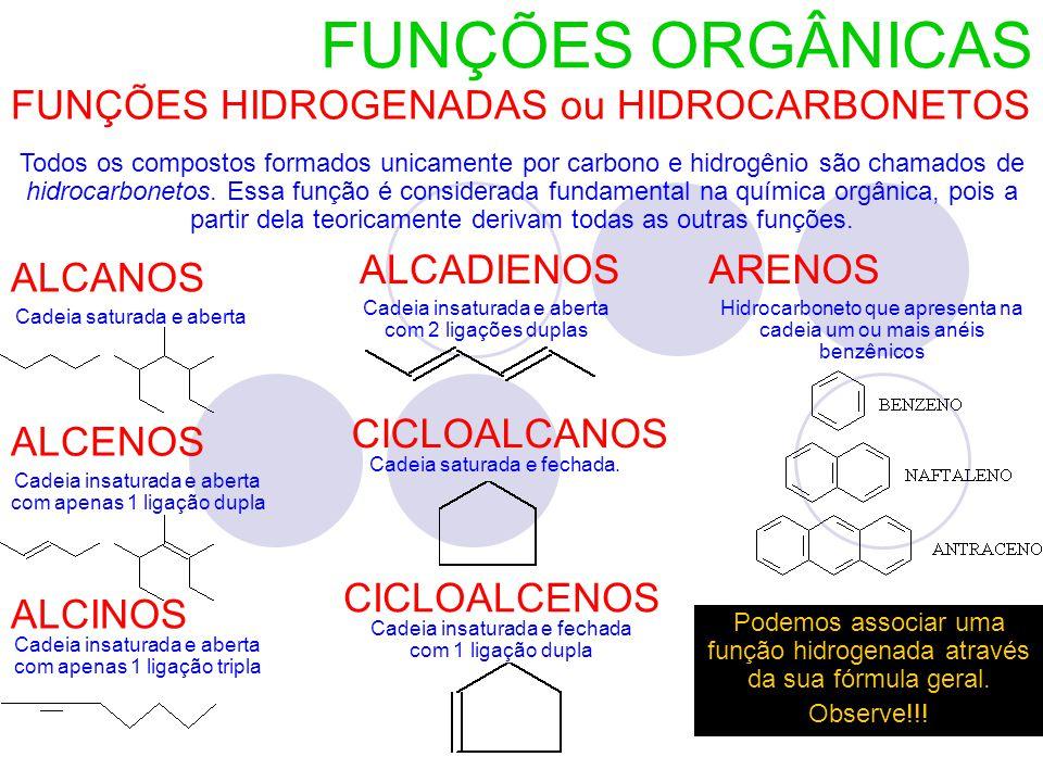 FUNÇÕES ORGÂNICAS FUNÇÕES HIDROGENADAS ou HIDROCARBONETOS Todos os compostos formados unicamente por carbono e hidrogênio são chamados de hidrocarbonetos.