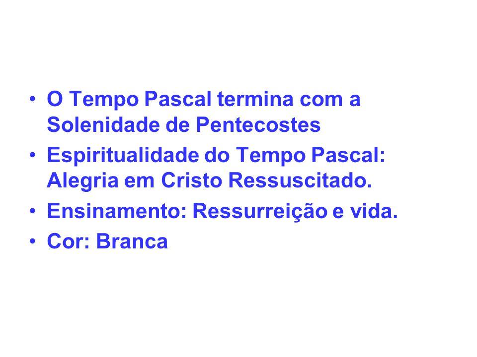 O Tempo Pascal termina com a Solenidade de Pentecostes Espiritualidade do Tempo Pascal: Alegria em Cristo Ressuscitado. Ensinamento: Ressurreição e vi
