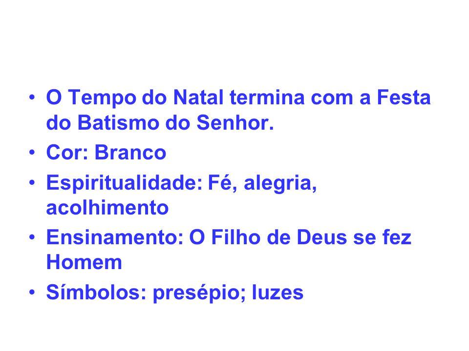 TEMPO COMUM (PRIMEIRA PARTE) Início: primeiro dia logo após a Festa do Batismo do Senhor O Tempo Comum é interrompido pela Quaresma.