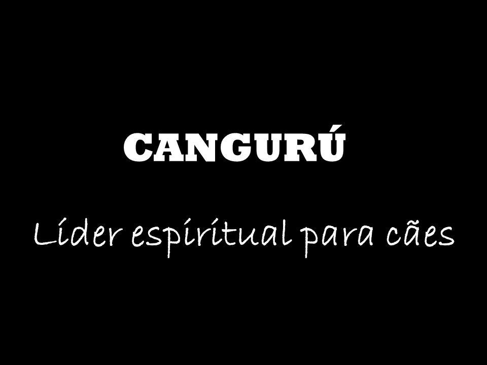 CANGURÚ Líder espiritual para cães