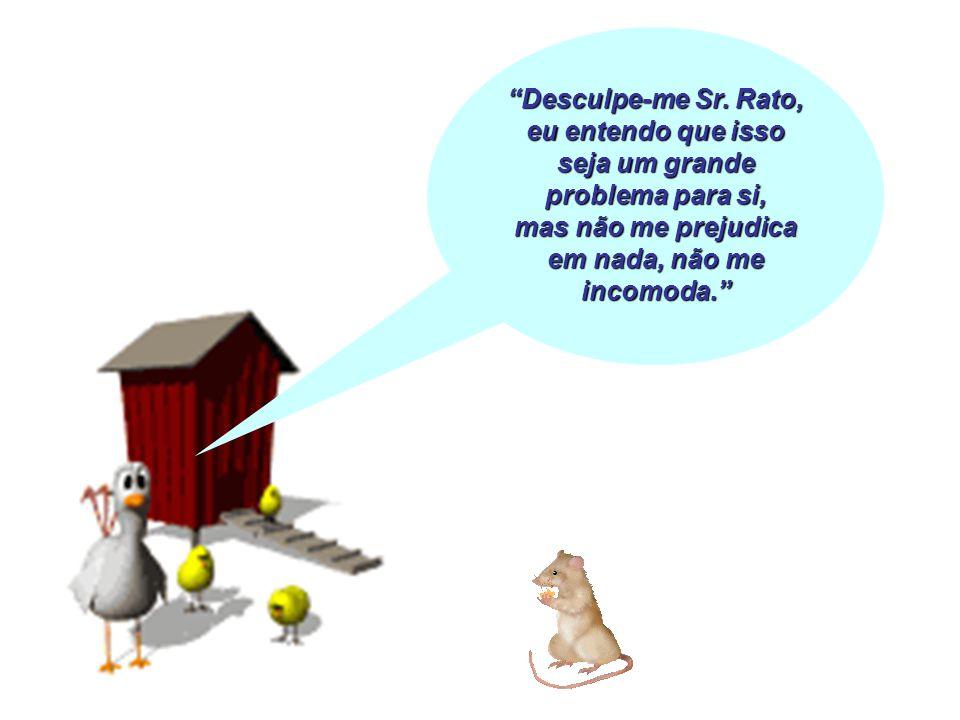 Desculpe-me Sr. Rato, eu entendo que isso seja um grande problema para si, mas não me prejudica em nada, não me incomoda.