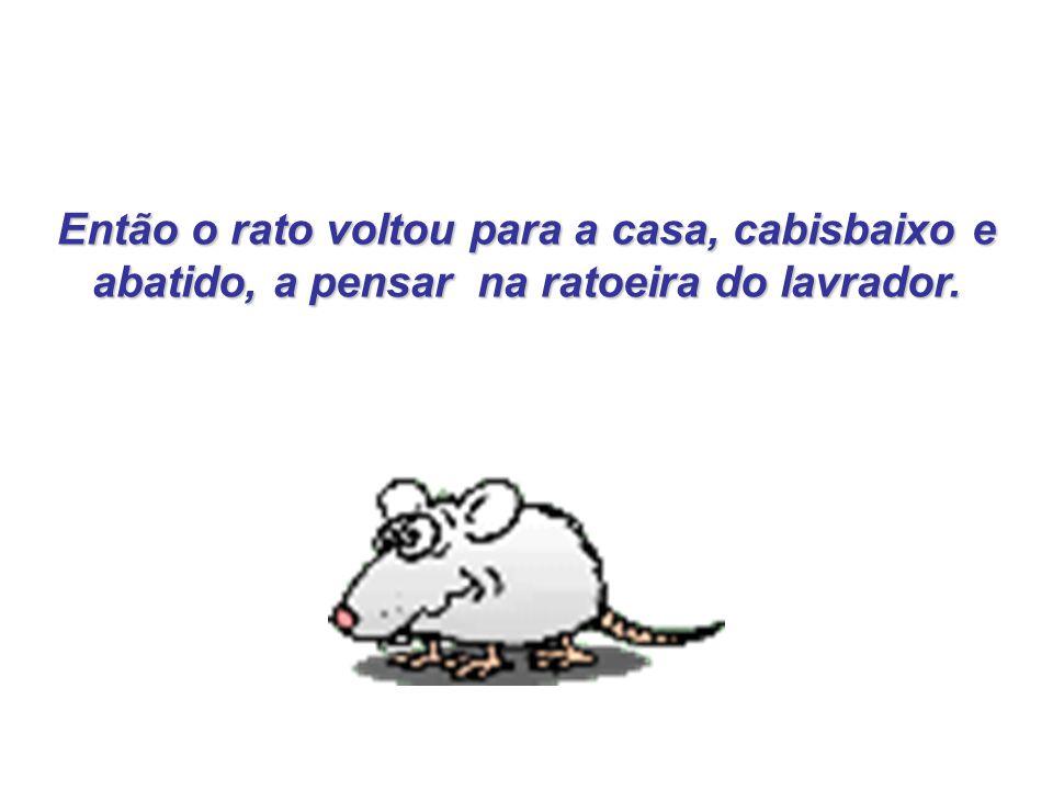 Então o rato voltou para a casa, cabisbaixo e abatido, a pensar na ratoeira do lavrador.