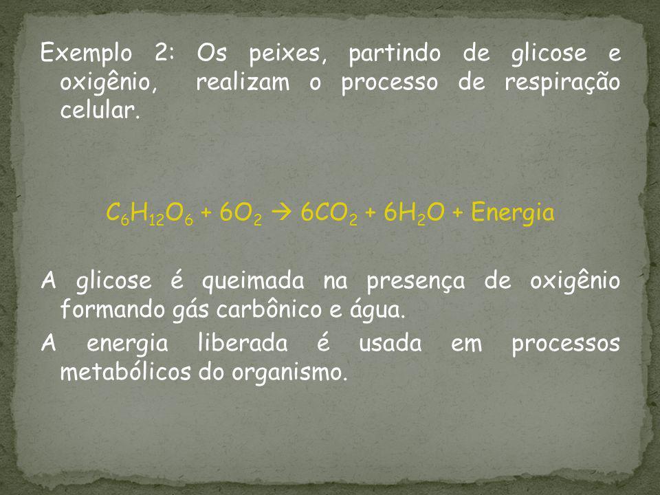 Exemplo 2: Os peixes, partindo de glicose e oxigênio, realizam o processo de respiração celular. C 6 H 12 O 6 + 6O 2 6CO 2 + 6H 2 O + Energia A glicos