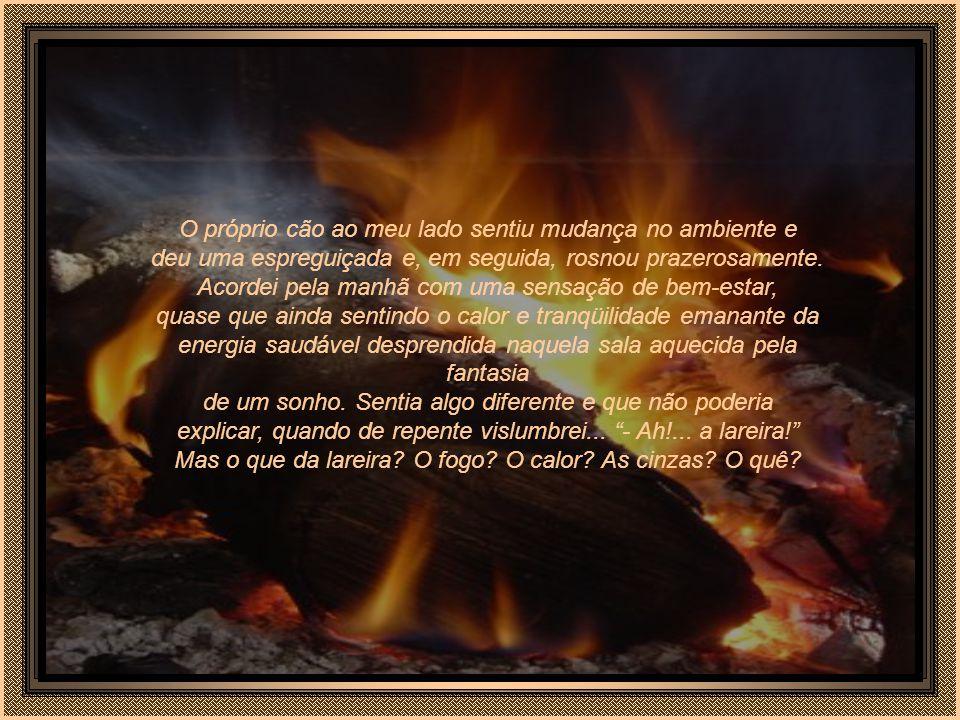 Paulatinamente o fogo da lareira foi se extinguindo e as chamas se acomodando dentro das cinzas foram escurecendo o ambiente, fazendo baixar lentament