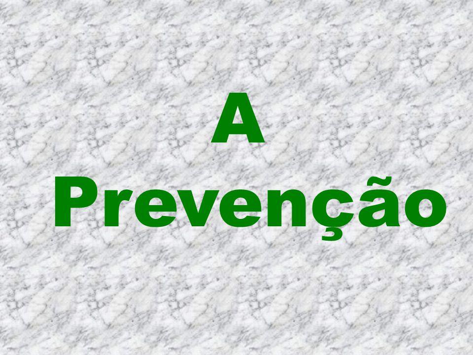 Fatores agravantes : Lay out inadequado Tensão excessiva e conflitos interpessoais Riscos físicos ( calor, ruído e umidade ) Deficiência de iluminação