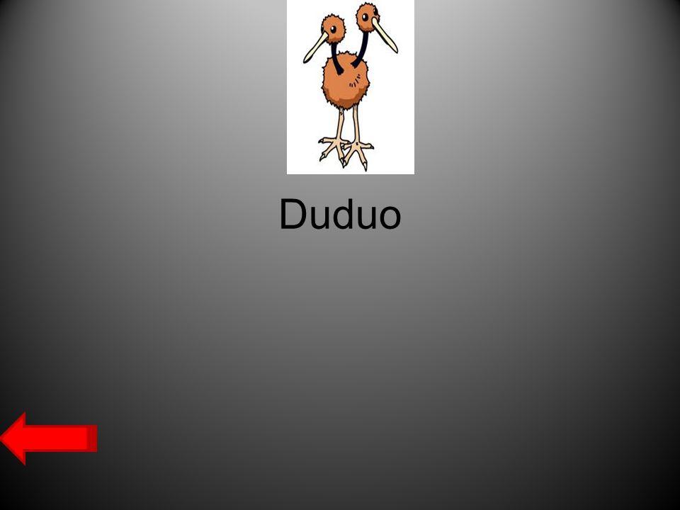 Duduo