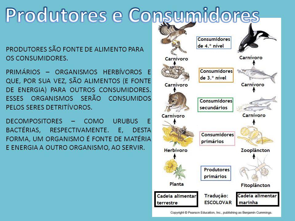 PRODUTORES SÃO FONTE DE ALIMENTO PARA OS CONSUMIDORES.