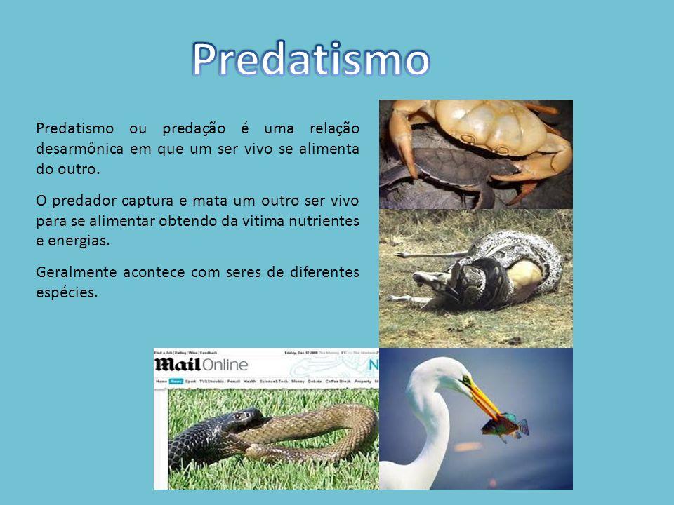 Predatismo ou predação é uma relação desarmônica em que um ser vivo se alimenta do outro.