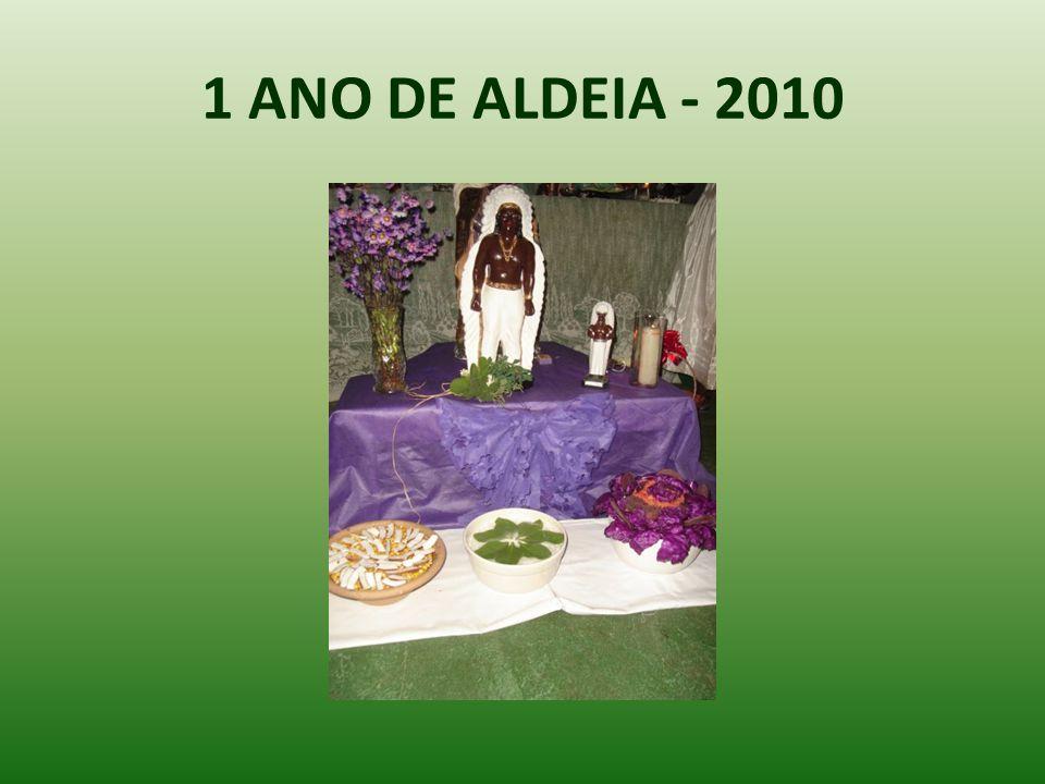 1 ANO DE ALDEIA - 2010