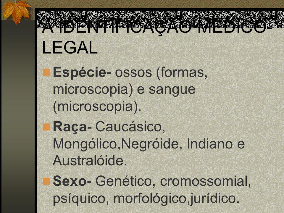 A IDENTIFICAÇÃO MÉDICO- LEGAL Espécie- ossos (formas, microscopia) e sangue (microscopia). Raça- Caucásico, Mongólico,Negróide, Indiano e Australóide.