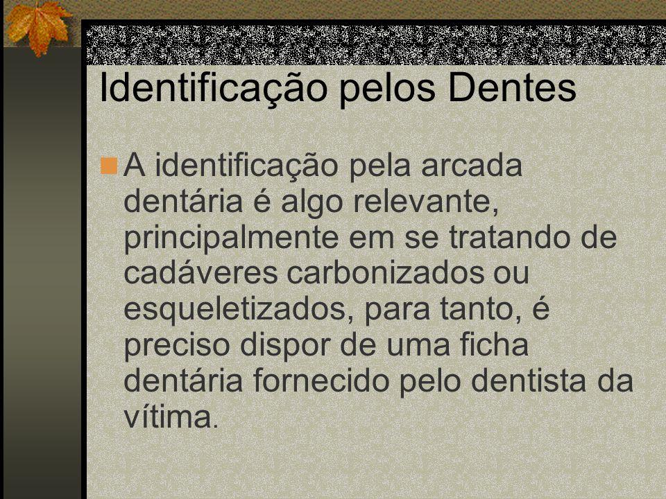 Identificação pelos Dentes A identificação pela arcada dentária é algo relevante, principalmente em se tratando de cadáveres carbonizados ou esqueleti