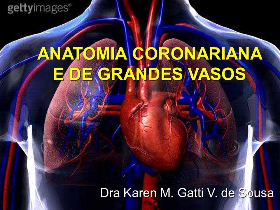 TRONCO PULMONAR À esquerda da aorta ascendente Inferior ao arco aórtico Comprimento aproximado de 5cm e diâmetro semelhante ao da aorta vizinha Bifurca-se nas proximidades do arco da aorta