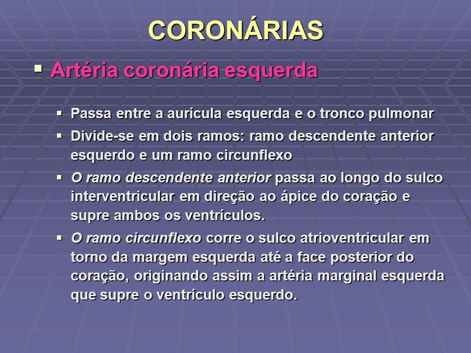 CORONÁRIAS Artéria coronária esquerda Artéria coronária esquerda Passa entre a aurícula esquerda e o tronco pulmonar Passa entre a aurícula esquerda e