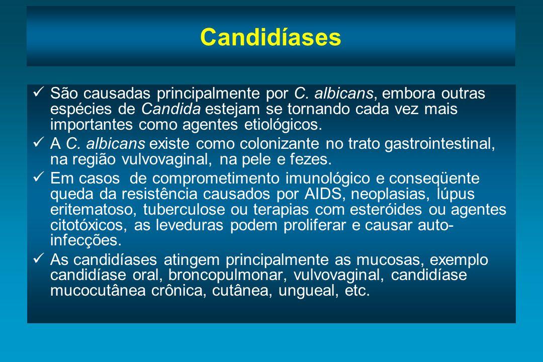 Candidíases São causadas principalmente por C. albicans, embora outras espécies de Candida estejam se tornando cada vez mais importantes como agentes