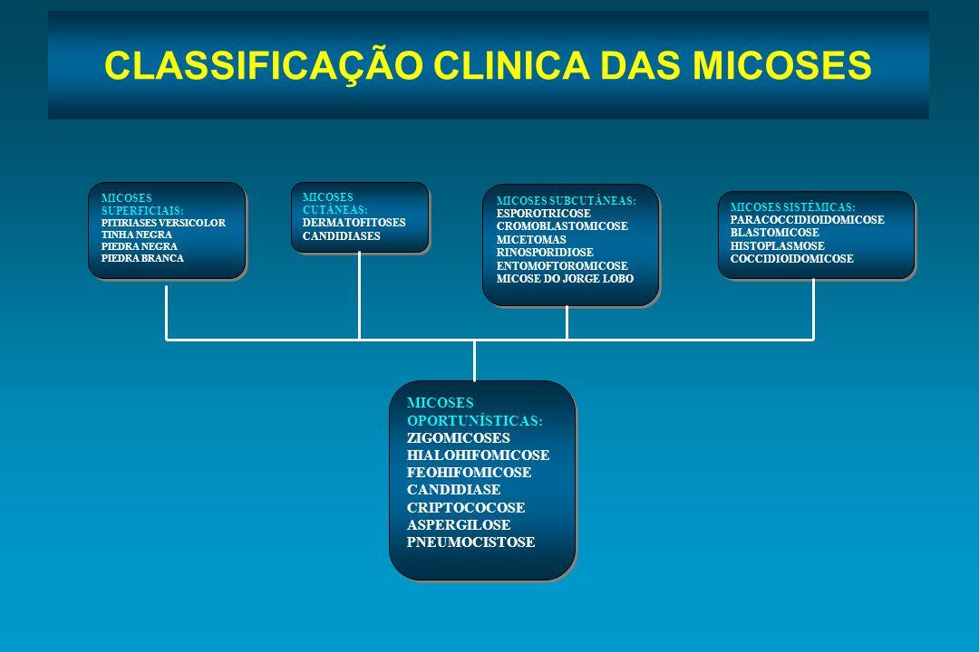 CLASSIFICAÇÃO CLINICA DAS MICOSES MICOSES SUPERFICIAIS: PITIRIASES VERSICOLOR TINHA NEGRA PIEDRA NEGRA PIEDRA BRANCA MICOSES SUPERFICIAIS: PITIRIASES