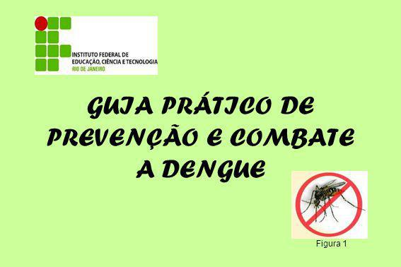 REFERÊNCIAS http://portal.saude.gov.br/saude/area.cfm?id_area=920 http://www.cecom.unicamp.br/dengue/previna-se.html http://www.combateadengue.com.br/repelente-natural-e-ecologico/ http://revistavigor.com.br/2008/09/23/citronela-planta-que-combate- o-mosquito-da-dengue 1- http://www.radioolindaam.com.br/olindamulher/archives/Category/ noticias FIGURAS: 2- http://baudeideiasdaivanise.blogspot.com/2011/09/estado-de-aterta- contra-dengue.html 3- http://www.brasilblogado.com/dengue-sintomas/