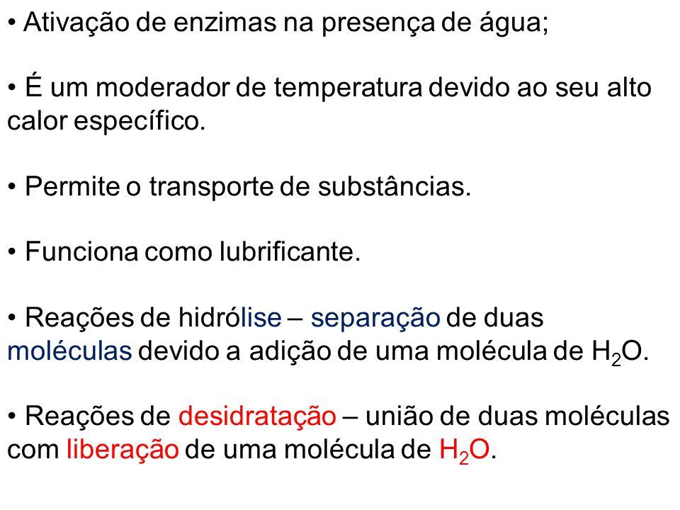 Ativação de enzimas na presença de água; É um moderador de temperatura devido ao seu alto calor específico. Permite o transporte de substâncias. Funci