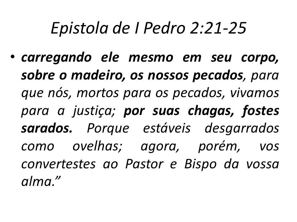Epistola de I Pedro 2:21-25 carregando ele mesmo em seu corpo, sobre o madeiro, os nossos pecados, para que nós, mortos para os pecados, vivamos para