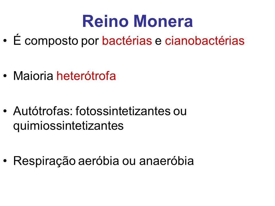 Reino Monera É composto por bactérias e cianobactérias Maioria heterótrofa Autótrofas: fotossintetizantes ou quimiossintetizantes Respiração aeróbia o