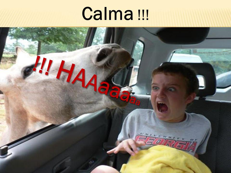 Calma !!! !!! H A Aa a a a a