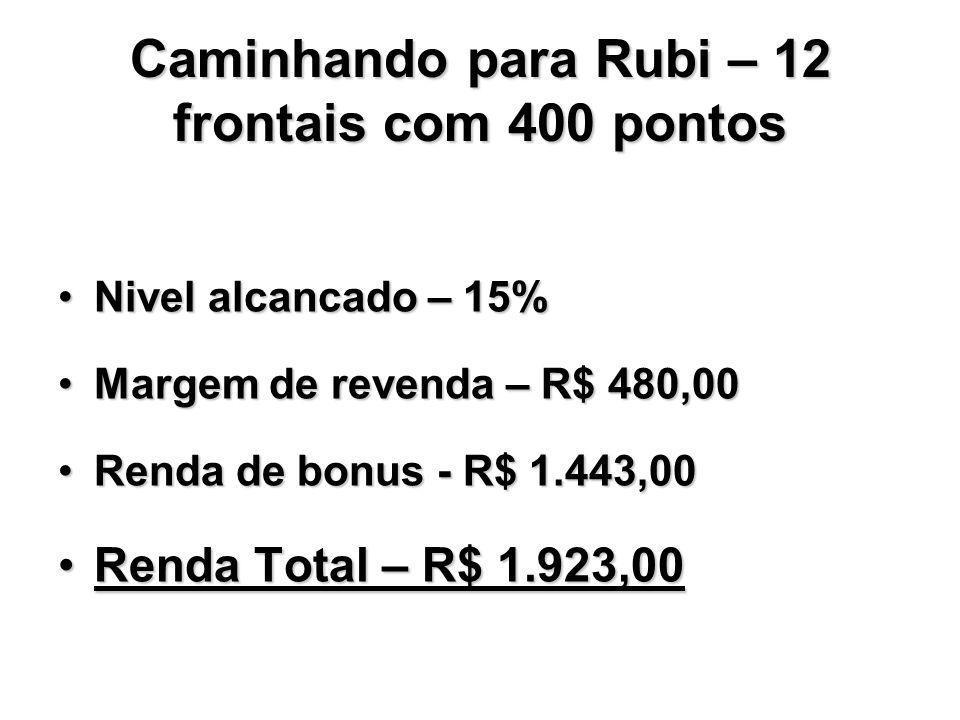 Caminhando para Rubi – 12 frontais com 400 pontos Nivel alcancado – 15%Nivel alcancado – 15% Margem de revenda – R$ 480,00Margem de revenda – R$ 480,0