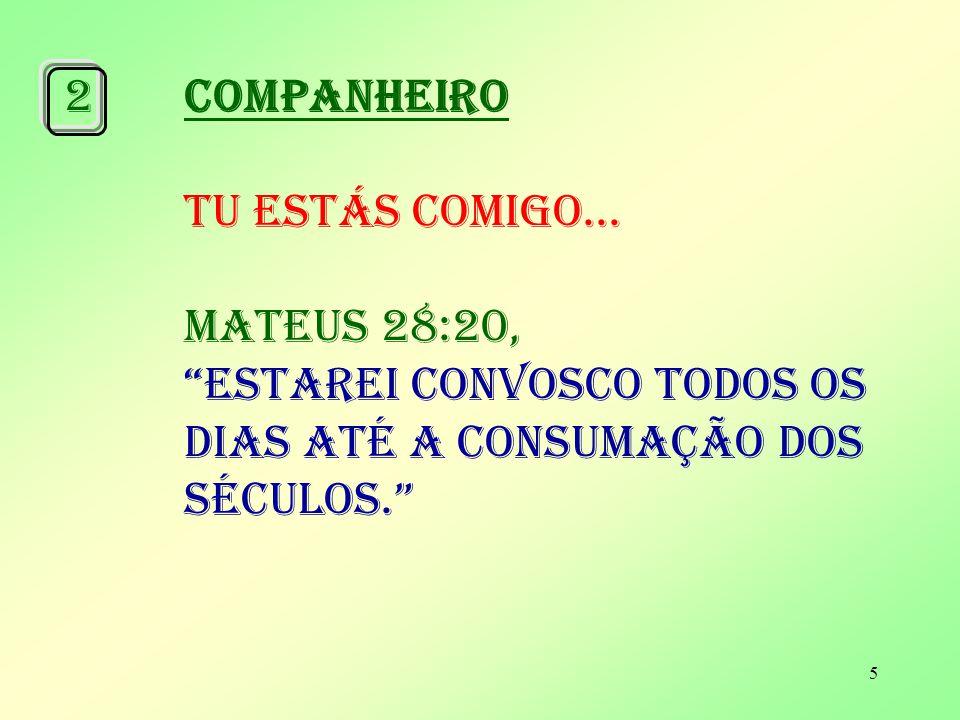 5 2COMPANHEIRO TU ESTÁS COMIGO...