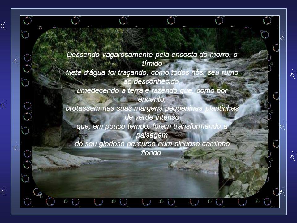 Texto: Sady Ricardo dos Santos Formatação: Vera Lúcia de Siqueira verinhaescorpios@gmail.com