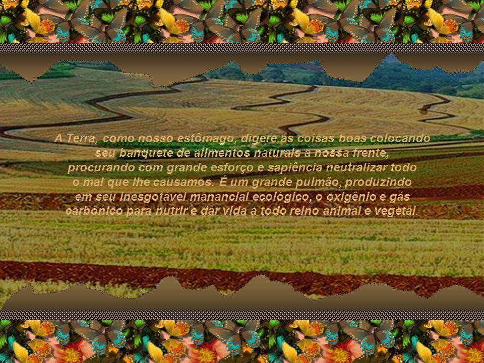 A Terra, como nosso estômago, digere as coisas boas colocando seu banquete de alimentos naturais a nossa frente, procurando com grande esforço e sapiência neutralizar todo o mal que lhe causamos.