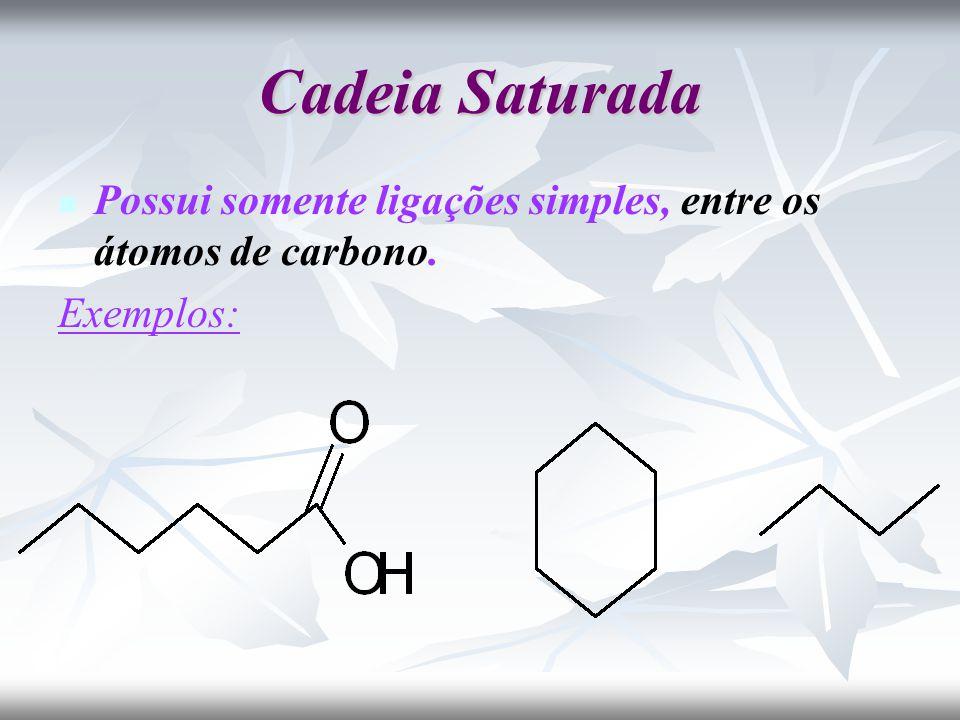 Cadeia Saturada Possui somente ligações simples, entre os átomos de carbono. Exemplos: