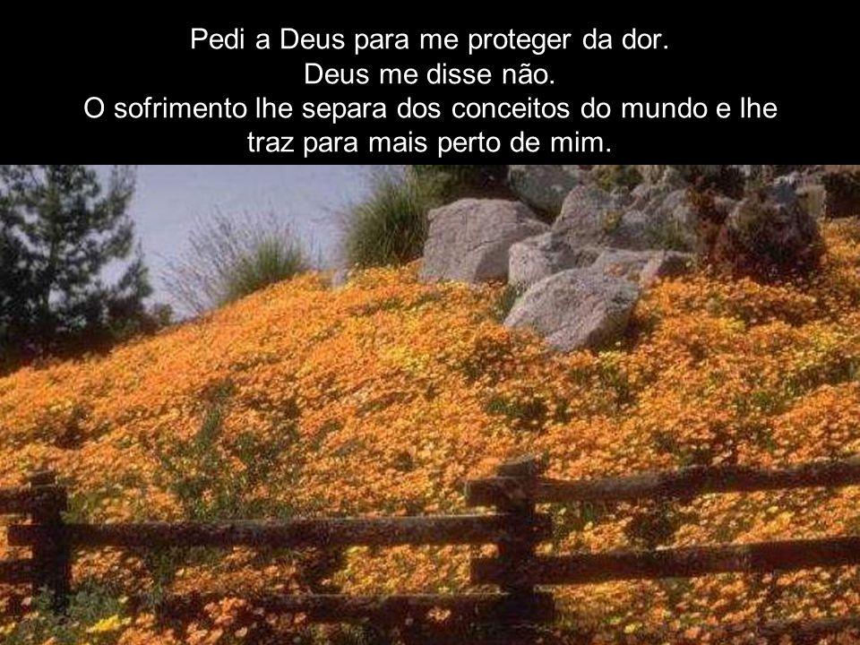 Pedi a Deus para me proteger da dor.Deus me disse não.