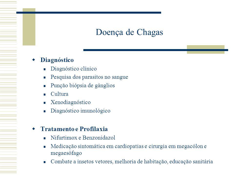 Doença de Chagas Diagnóstico Diagnóstico clínico Pesquisa dos parasitos no sangue Punção biópsia de gânglios Cultura Xenodiagnóstico Diagnóstico imuno