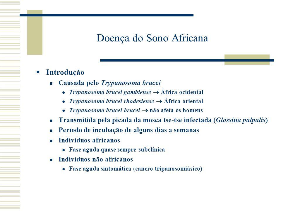 Doença do Sono Africana Patogenia e Manifestações clínicas Invasão do tecido no local da picada disseminação linfática acometimento do sistema nervoso Fase disseminação linfática Linfadenopatia (sinais de Winterbotton), febre, enrijecimento de membros, mal estar geral, dor de cabeça, anorexia, náuseas, vômitos sudorese noturna, apatia Sistema nervoso 6 meses a 1 ano após primeiros sintomas de parasitismo meningoencefalite com deterioração geral da saúde do indivíduo, aumento da apatia e fadiga, confusão mental e sonolência rosto edemaciado fibrilações musculares (rosto, lábios e dedos), falta de coordenação, sinal de Kerandel incontinência urinária e fecal, convulsões, parestesias dificuldade de despertar coma Transmissão congênita muito rara é freqüente aborto e nascimento de feto morto