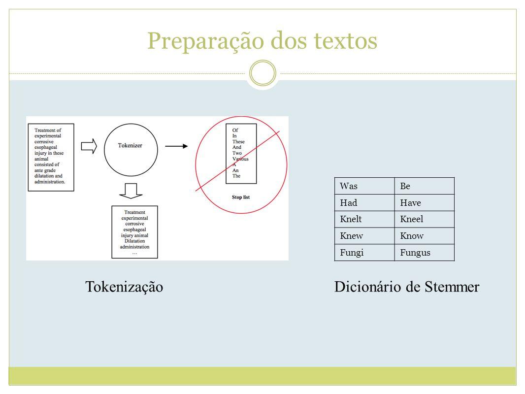 Preparação dos textos WasBe HadHave KneltKneel KnewKnow FungiFungus Dicionário de StemmerTokenização