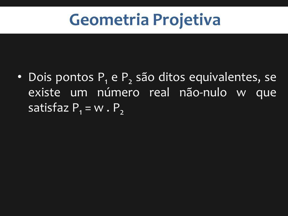 Geometria Projetiva Dois pontos P 1 e P 2 são ditos equivalentes, se existe um número real não-nulo w que satisfaz P 1 = w. P 2